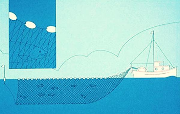 sustainable fishing : gillnetter